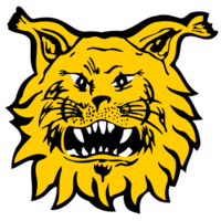 Ilves/CT2